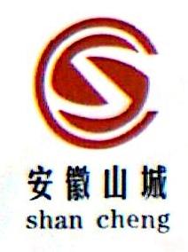 安徽长银矿业集团有限公司
