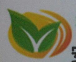 安徽绿大地种业有限公司
