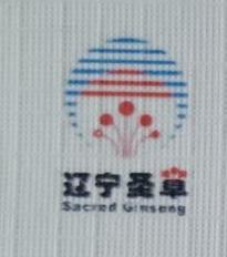 辽宁圣大健康产业集团有限公司