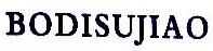 陕西注册美国公司
